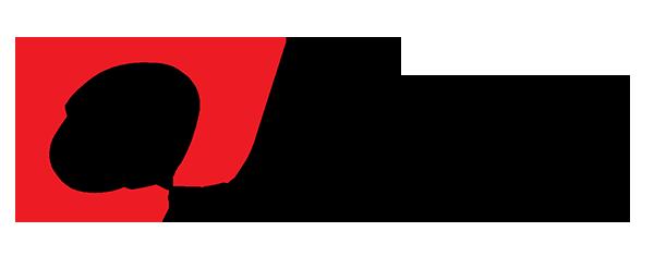 Logo Thương hiệu camera giám sát Dahua