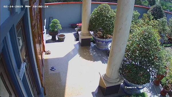 Hình ảnh sắc nét rõ ràng tùng chi tiết tại khu vực sân vườn trước ban công